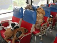 Heading home!